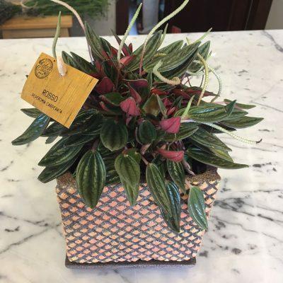 Ručne robený keramický ružovkastý kvetináč aj s podtáckou – 14x14cm