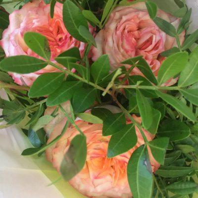 Kytica troch ruží v dvojfarebnom hodvábnom balení