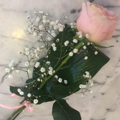 Ružová ruža previazaná mašľou z raphie