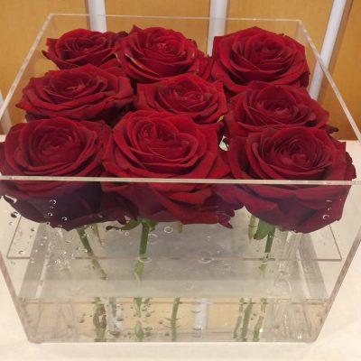 Červené ruže v priehľadnom boxe