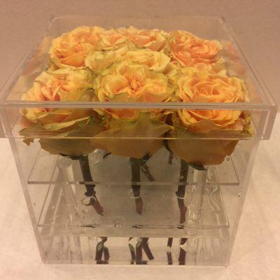 Žlté ruže v priehľadnom boxe